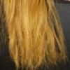髪は減点法で痛んでいきます