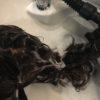 シャンプー方法を変え抜け毛を減らす